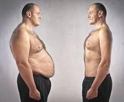 Belly fat.jpg